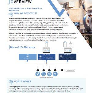 MicroAI + Network_OverviewSheet